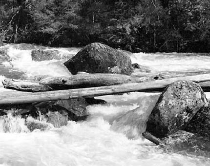 Bogong River