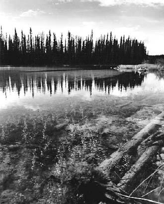 Blue Lakes, BC